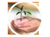 psmn logo